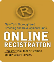 New York Mares & Stallions: Horse Breeding Rules For