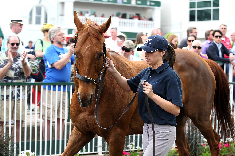 Funny Cide On Parade At Churchill Downs For 10th Anniversary Visit