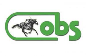 OBS color logo