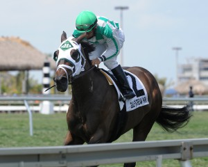 Coglianese photo/Kenny Martin