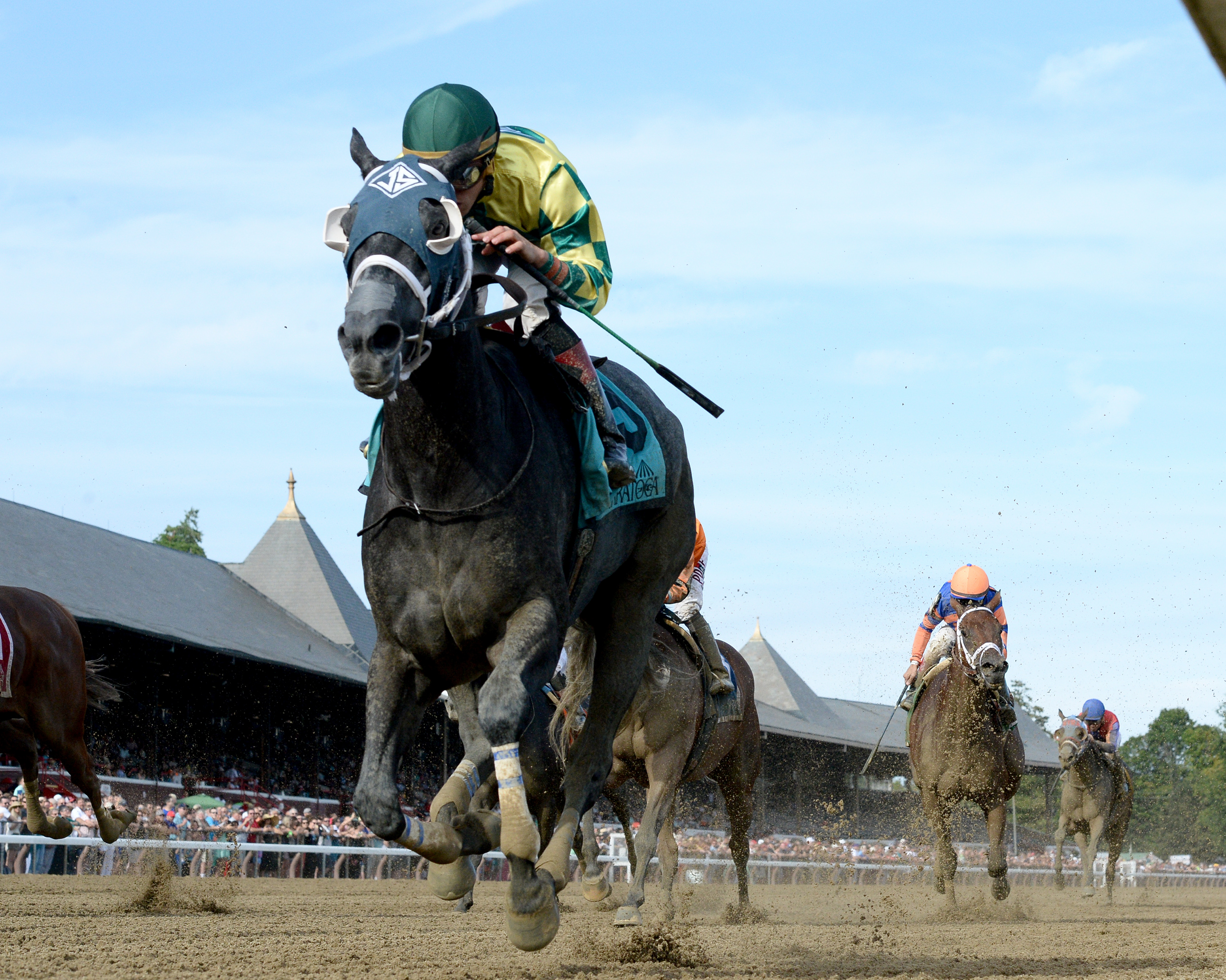 new york thoroughbred breeders thoroughbred ownerview